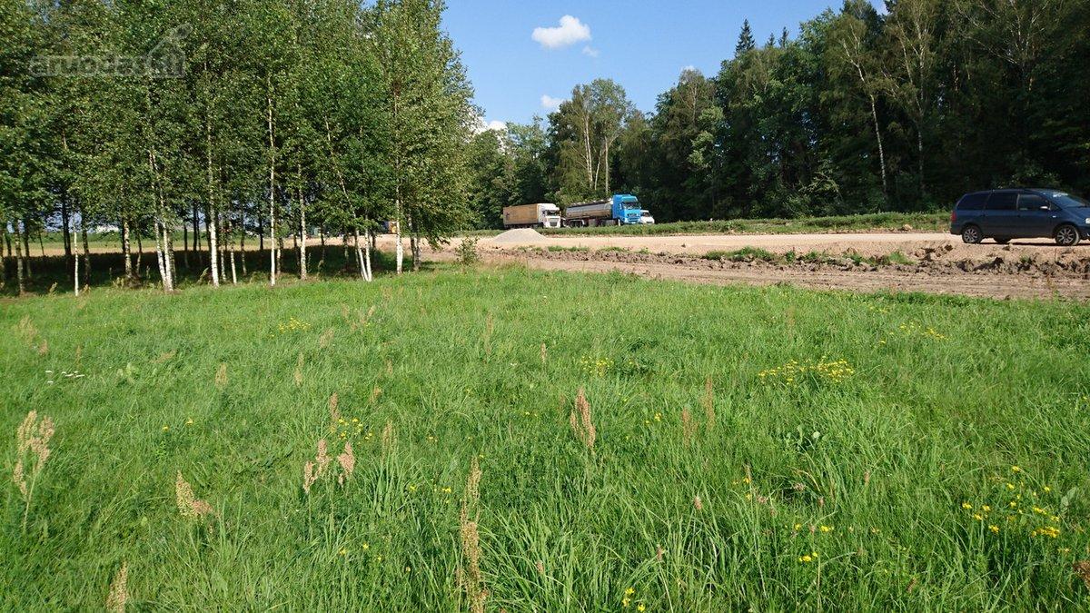 Kazlų Rūdos sav., Kvietiškio k., žemės ūkio paskirties sklypas