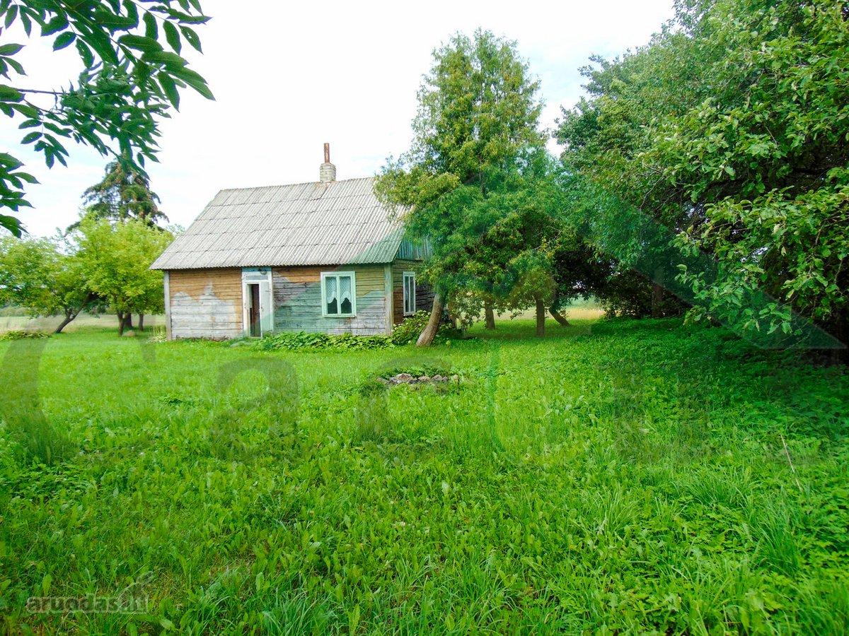 Alytaus r. sav., Ponkiškių k., medinė sodyba