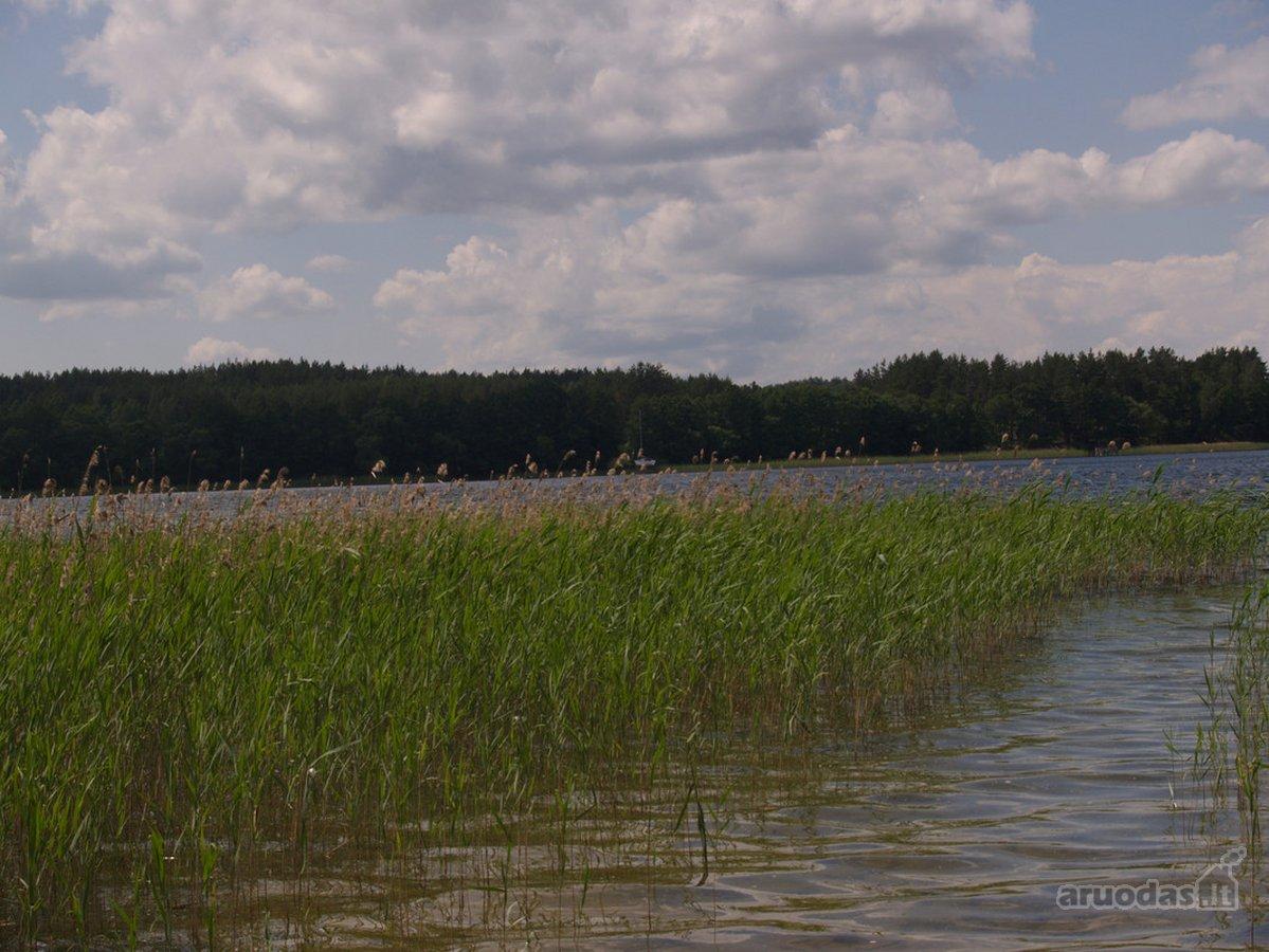 Ignalinos r. sav., Plavėjų k., gyvenamosios statybos paskirties sklypas