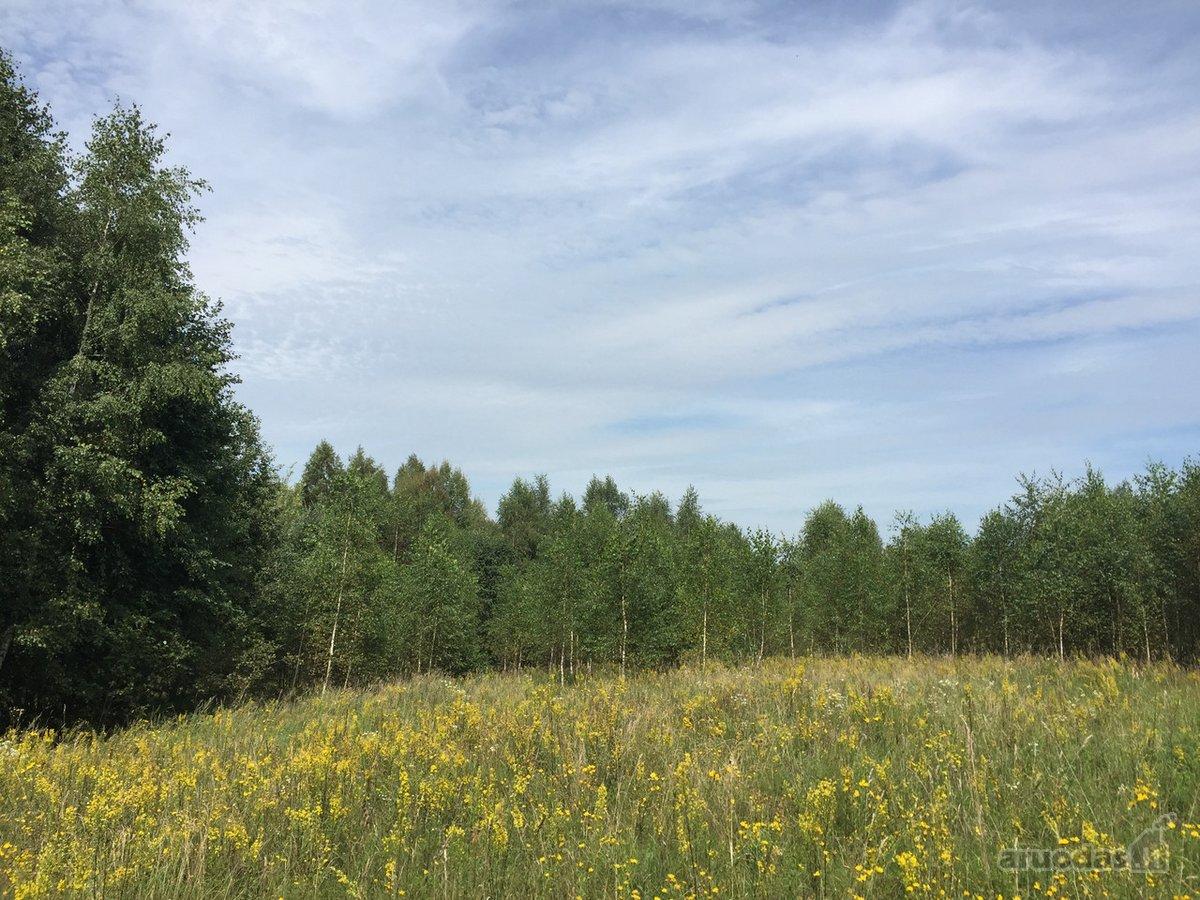 Vilniaus r. sav., Trečiokiškių k., žemės ūkio paskirties sklypas