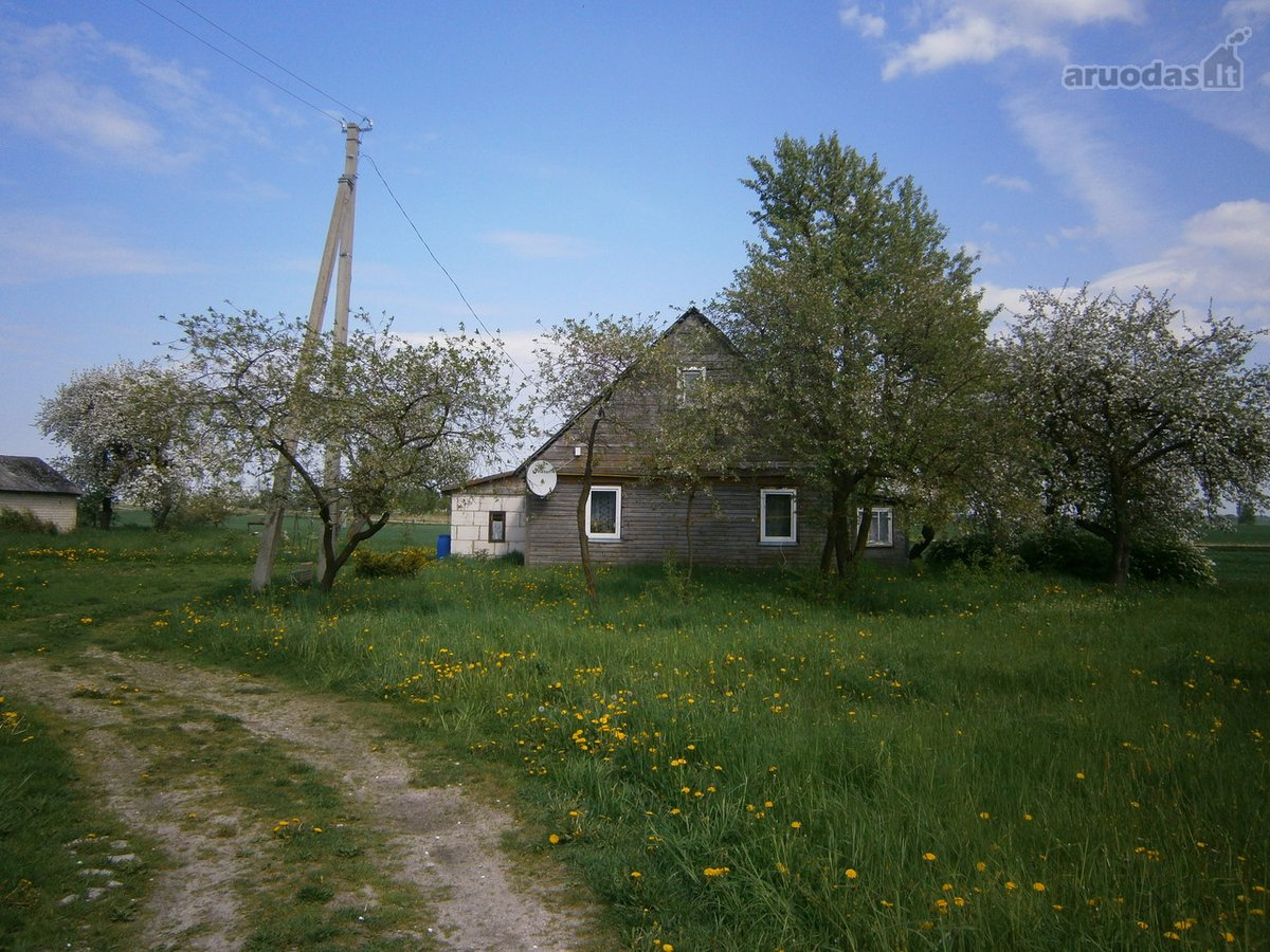 Kauno r. sav., Vilkijos k., medinis namas