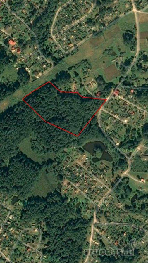 Vilniaus r. sav., Rastinėnų k., Bubų g., miškų ūkio paskirties sklypas