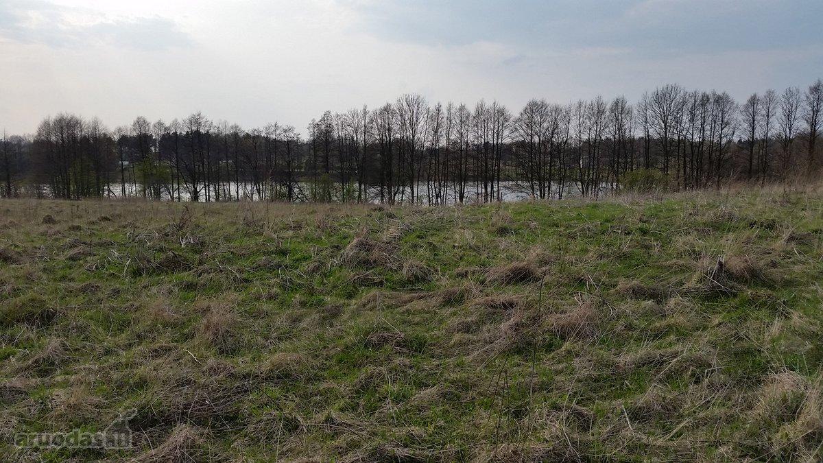 Vilniaus r. sav., Melkio k., žemės ūkio paskirties sklypas