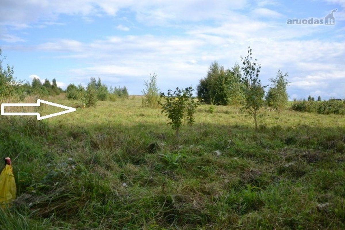 Vilniaus r. sav., Didžiasalio k., Didžiasalio g., žemės ūkio paskirties sklypas