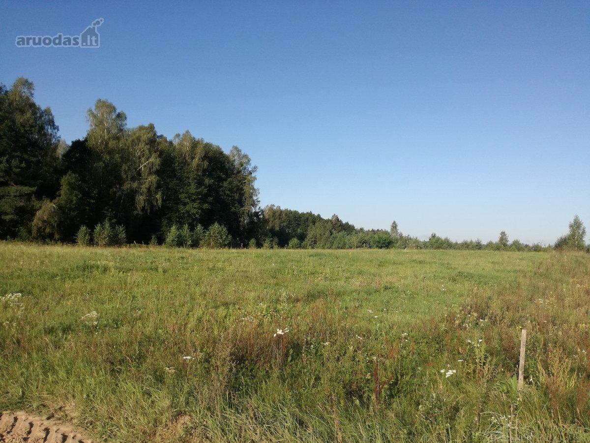 Druskininkų sav., Snaigupės k., žemės ūkio paskirties sklypas