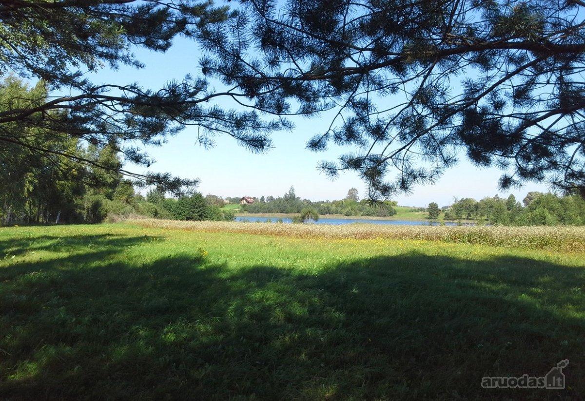 Ignalinos r. sav., Ožionių k., žemės ūkio paskirties sklypas