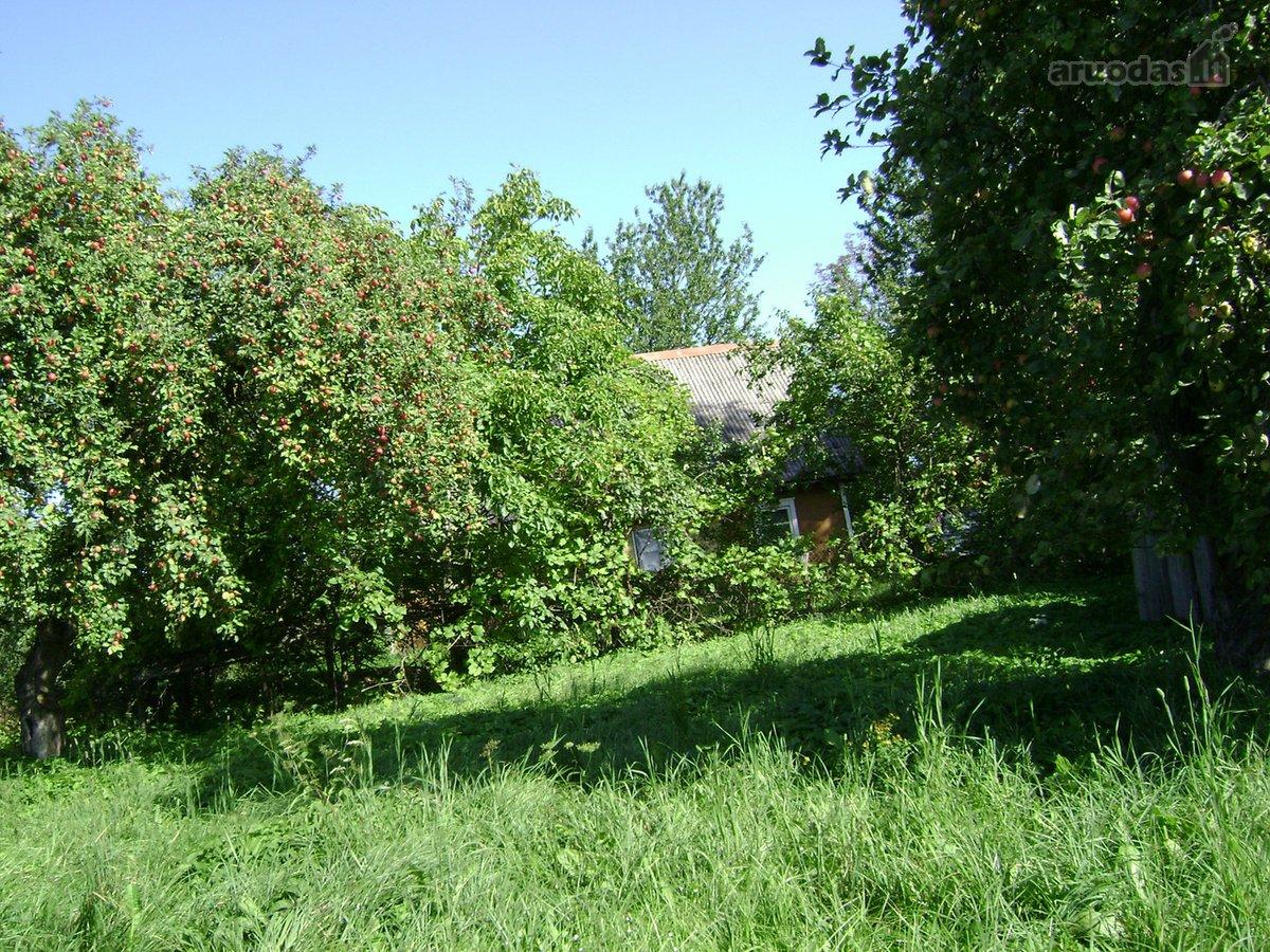 Vilniaus r. sav., Gailašių k., rąstinė sodyba