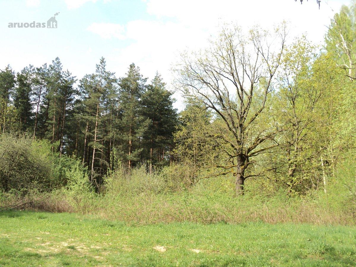 Vilnius, Valakampiai, Lauksargio g., namų valdos paskirties sklypas