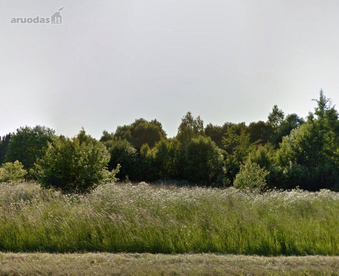 Kretingos r. sav., Daubėnų k., Rūtų g., kolektyvinis sodas sklypas