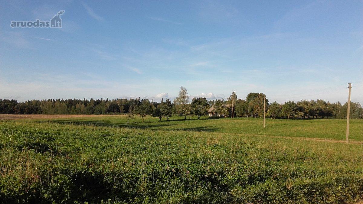 Birštono sav., Nečiūnų k., medinė sodyba