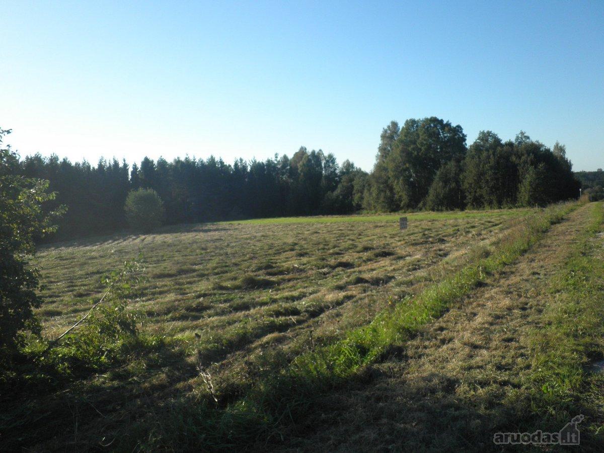 Kretingos r. sav., Kalno Grikštų k., žemės ūkio paskirties sklypas