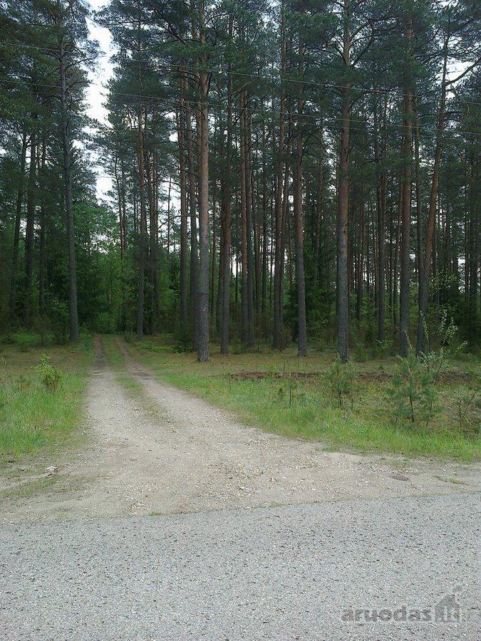 Švenčionių r. sav., Meškerinės vs., miškų ūkio paskirties sklypas