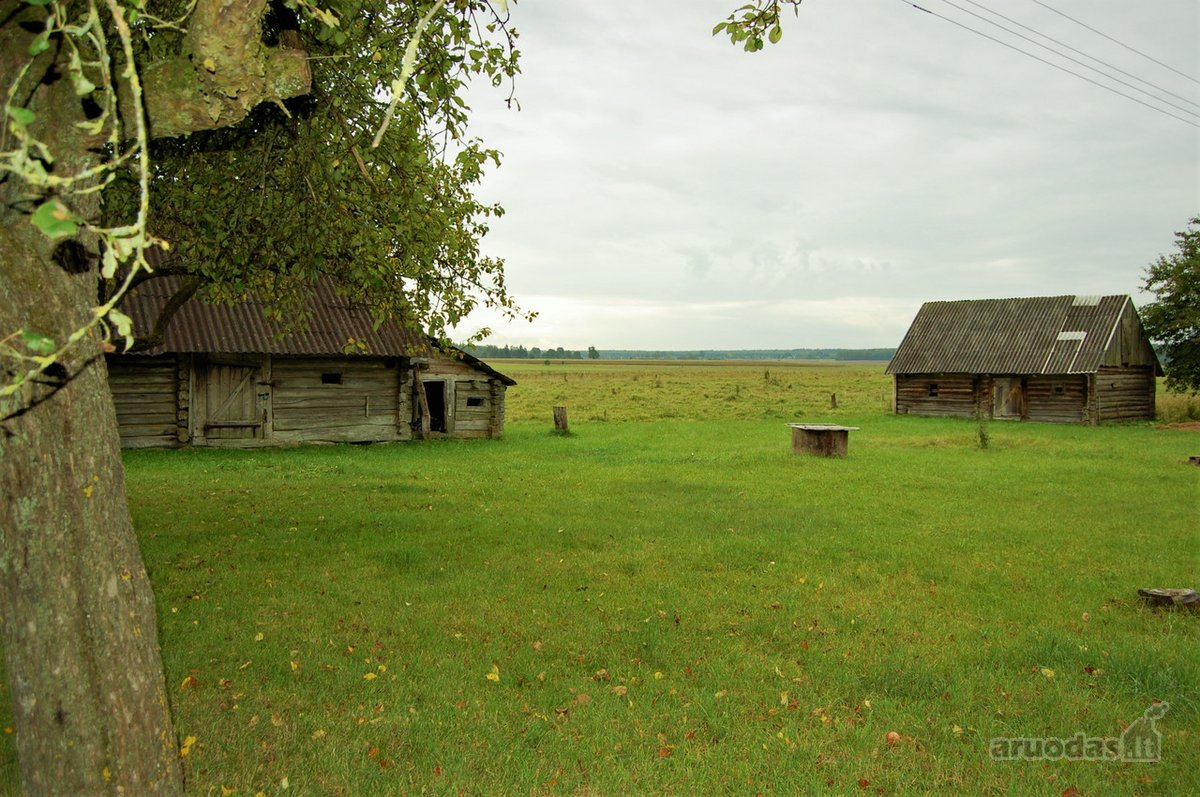 Varėnos r. sav., Panočių k., Parko g., rąstinė sodyba
