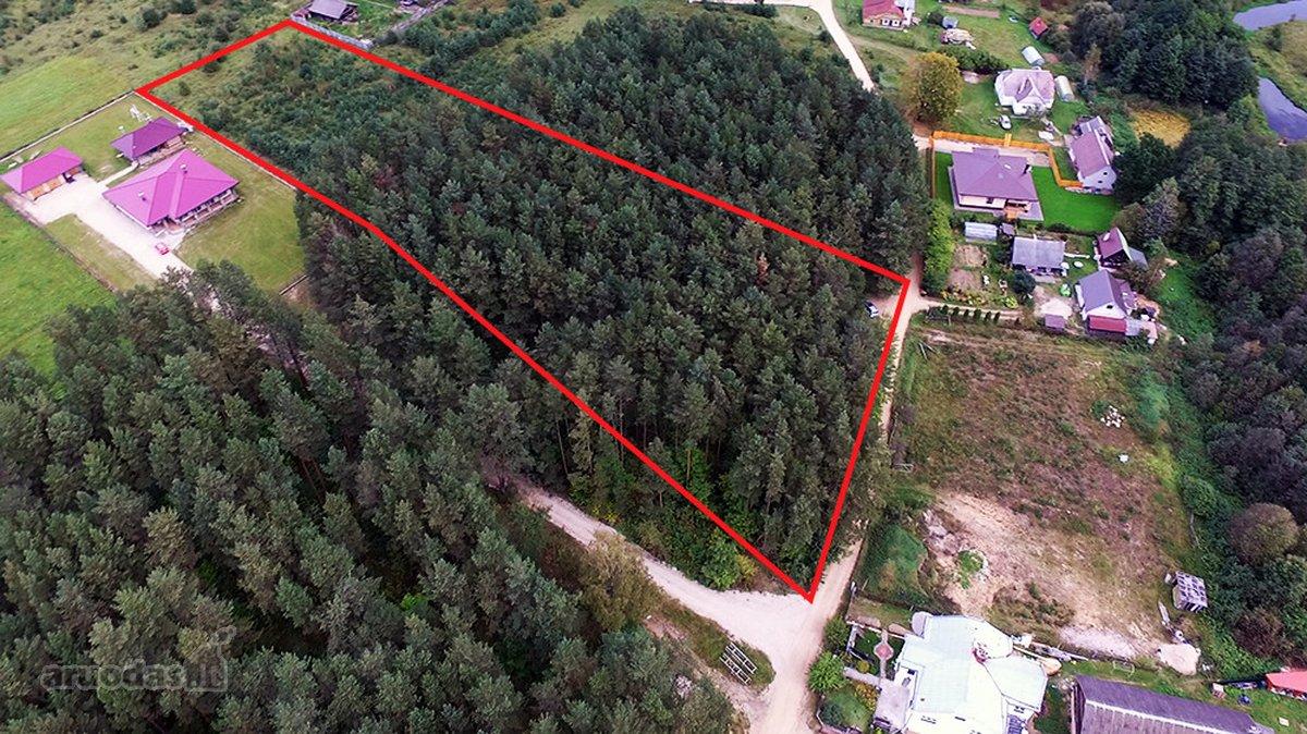 Vilnius, Naujoji Vilnia, žemės ūkio, miškų ūkio paskirties sklypas
