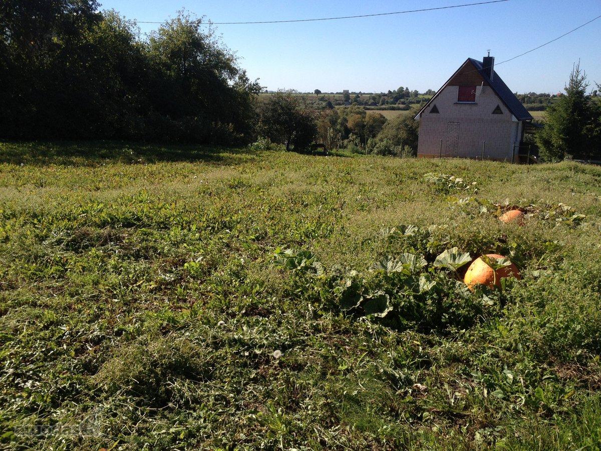 Kėdainių r. sav., Pelėdnagių k., kolektyvinis sodas sklypas