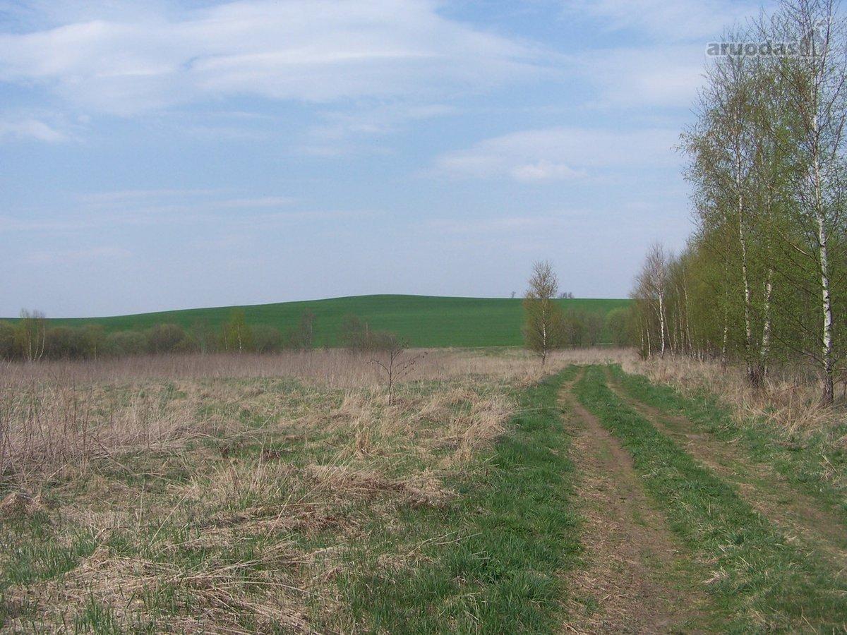 Vilniaus r. sav., Juodalaukio k., žemės ūkio paskirties sklypas