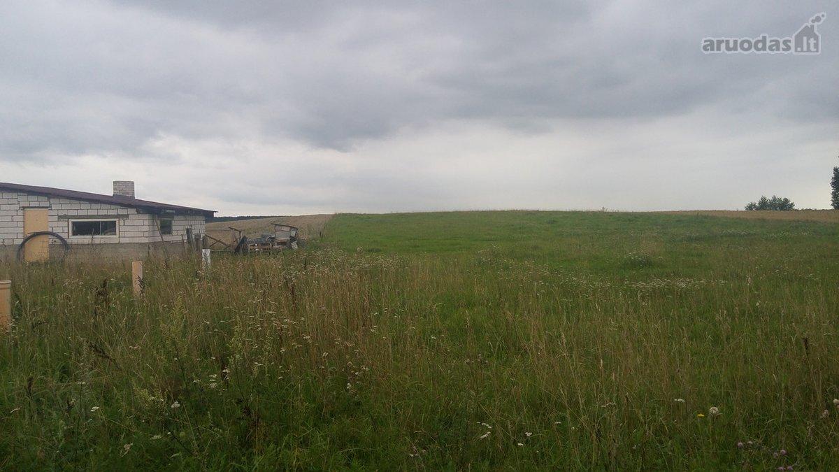 Alytaus r. sav., Radžiūnų k., Miško g., namų valdos paskirties sklypas