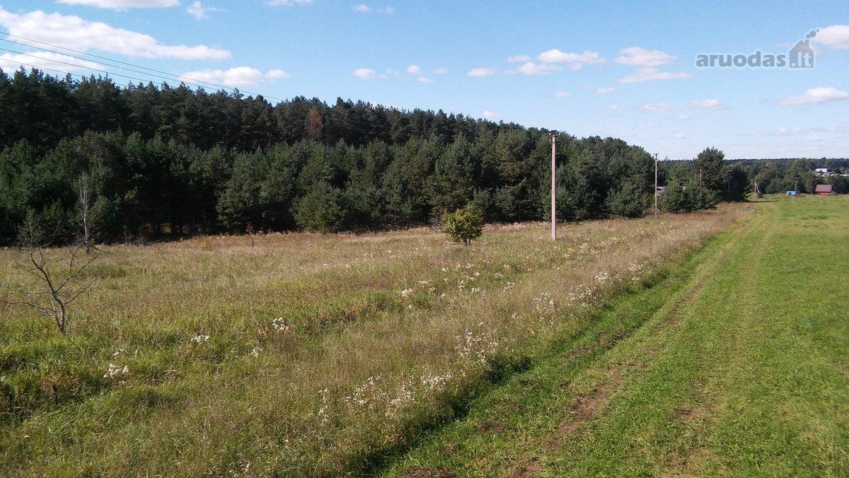 Vilniaus r. sav., Užupėnų k., namų valdos paskirties sklypas