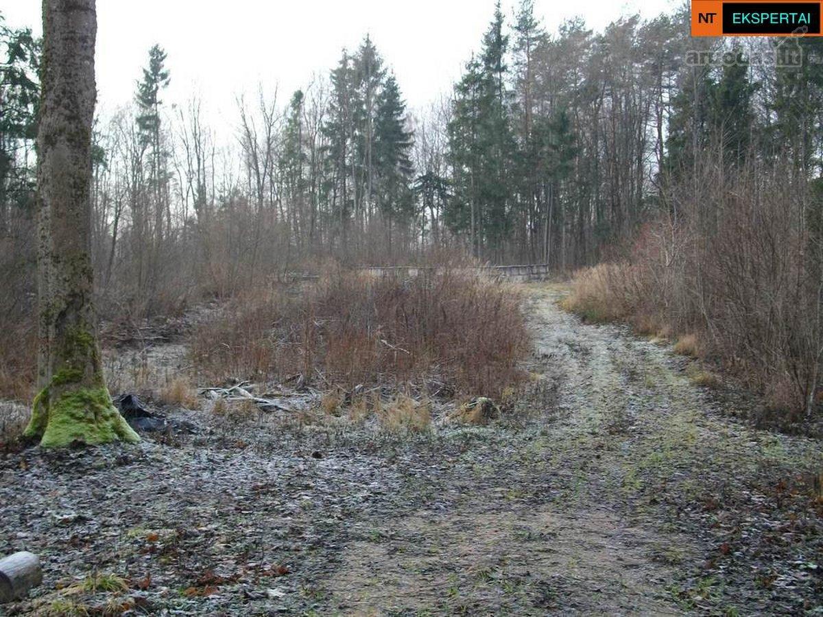 Vilniaus r. sav., Čekoniškių k., miškų ūkio paskirties sklypas