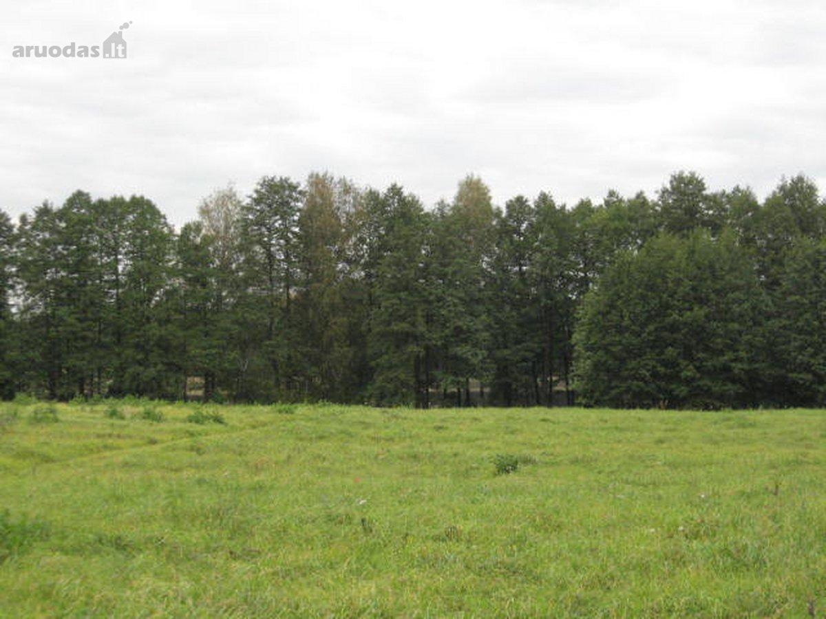 Ignalinos r. sav., Palūšės k., žemės ūkio paskirties sklypas