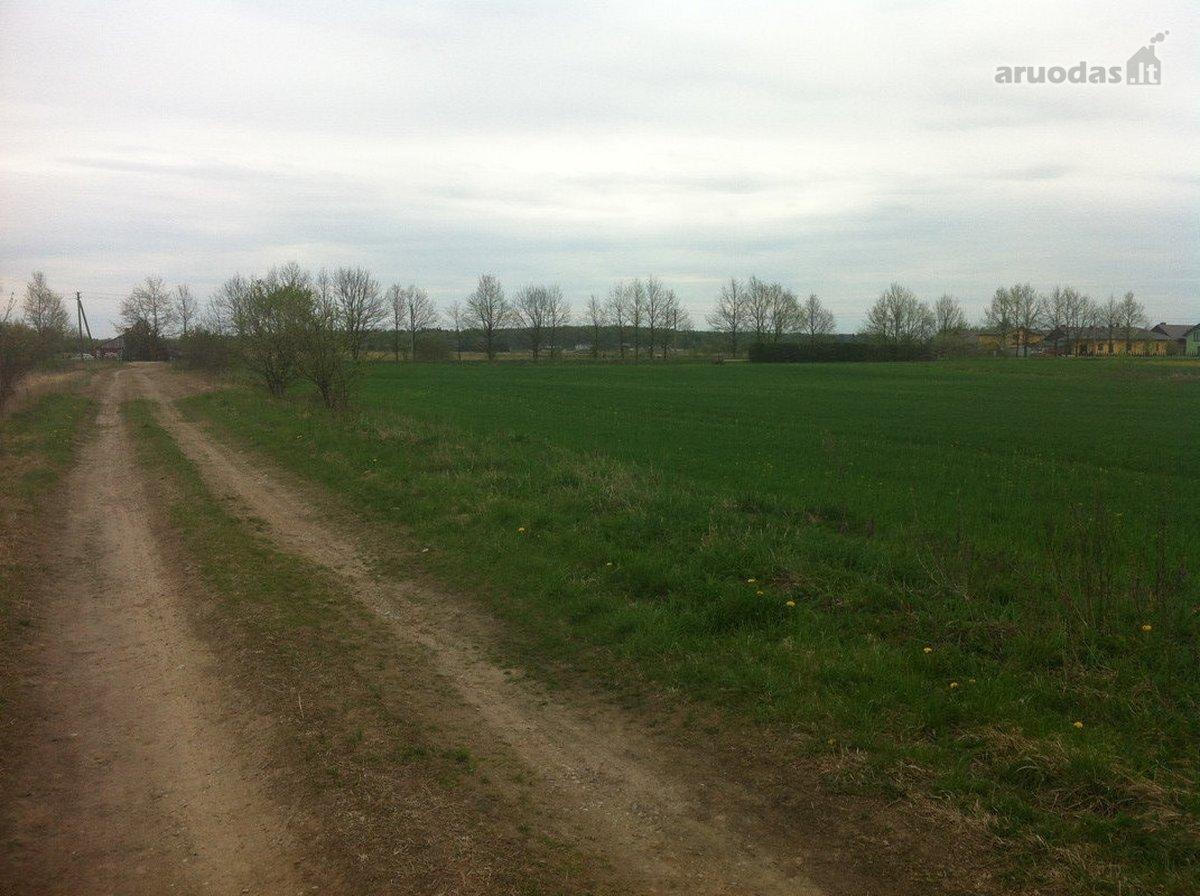 Kauno r. sav., Kampiškių k., Kampiškių g., namų valdos, žemės ūkio paskirties sklypas