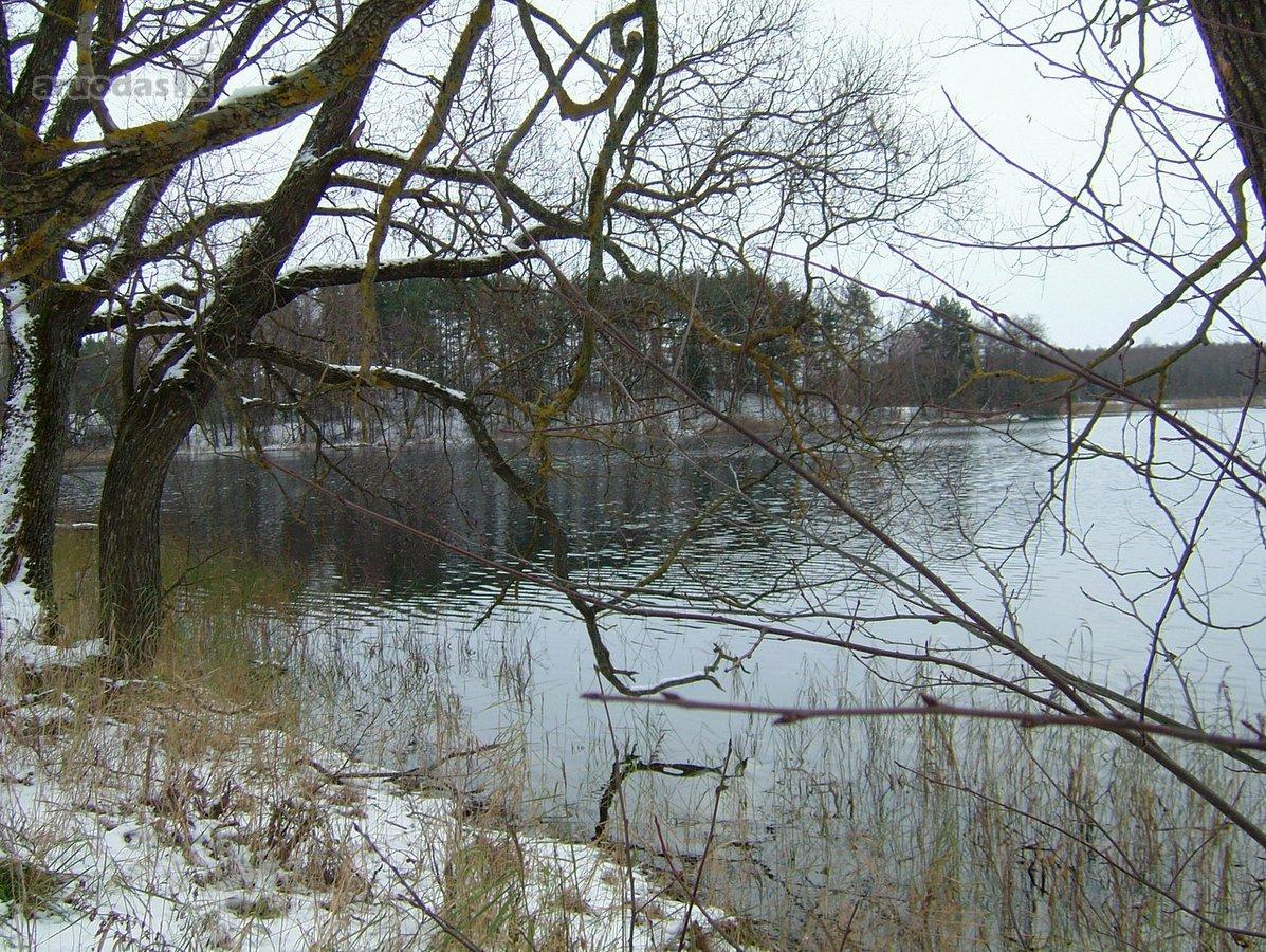 Ignalinos r. sav., Pamunės k., residential purpose vacant land