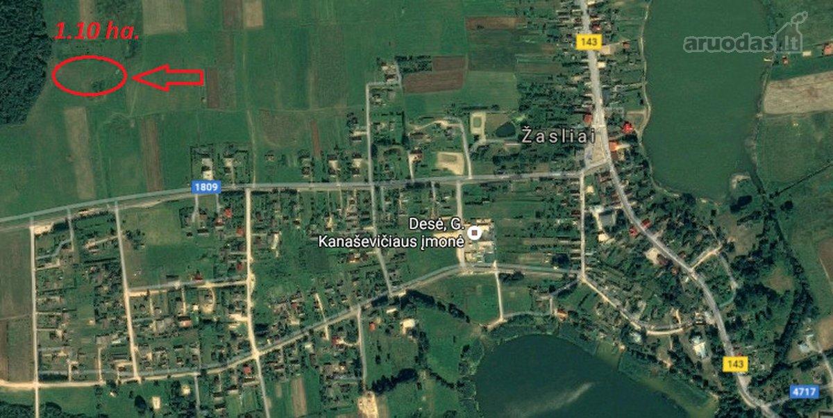 Kaišiadorių r. sav., Žaslių mstl., Kaišiadorių g., žemės ūkio paskirties sklypas