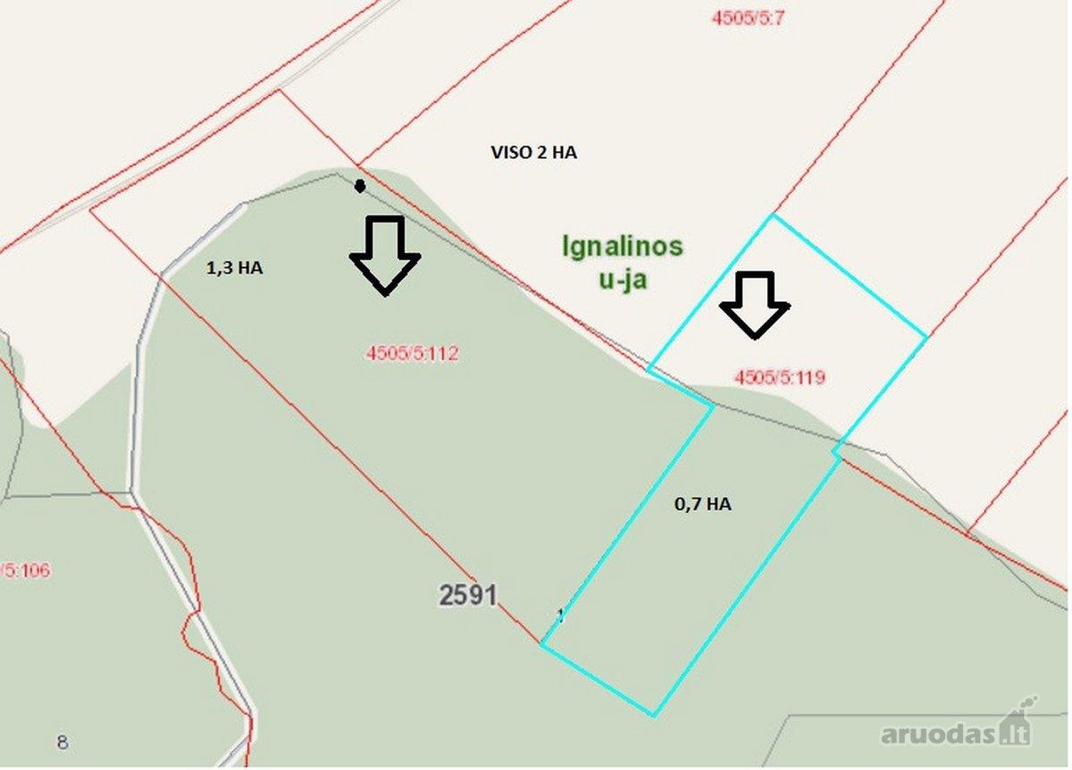 Ignalinos r. sav., Naujasalio k., miškų ūkio paskirties sklypas