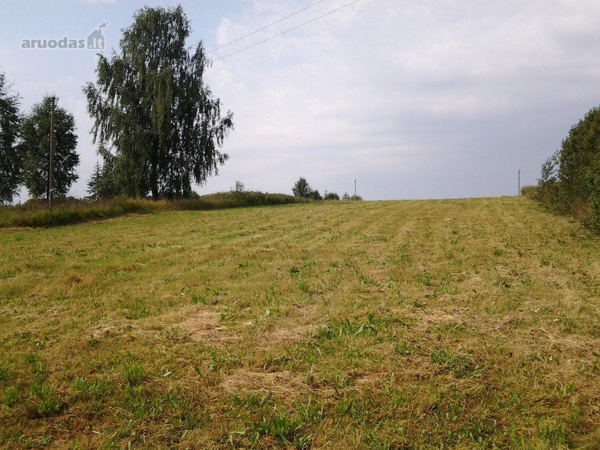 Vilniaus r. sav., Žemlių k., žemės ūkio paskirties sklypas