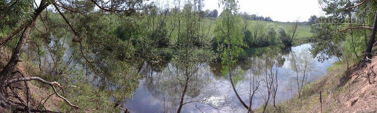 Anykščių r. sav., Žaliosios k., miškų ūkio, rekreacinės paskirties sklypas