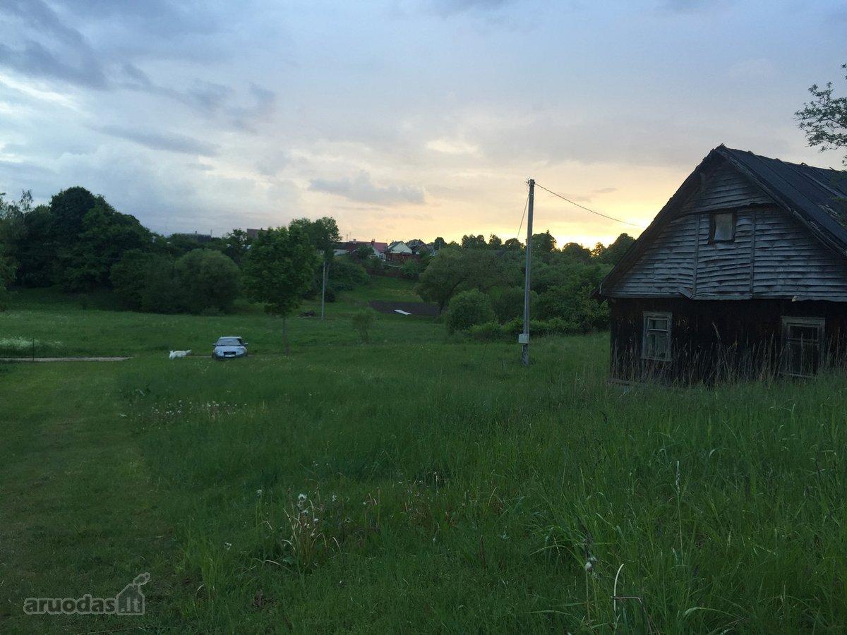 Alytaus r. sav., Raudonikių k., Alytaus g., medinis namas nuomai