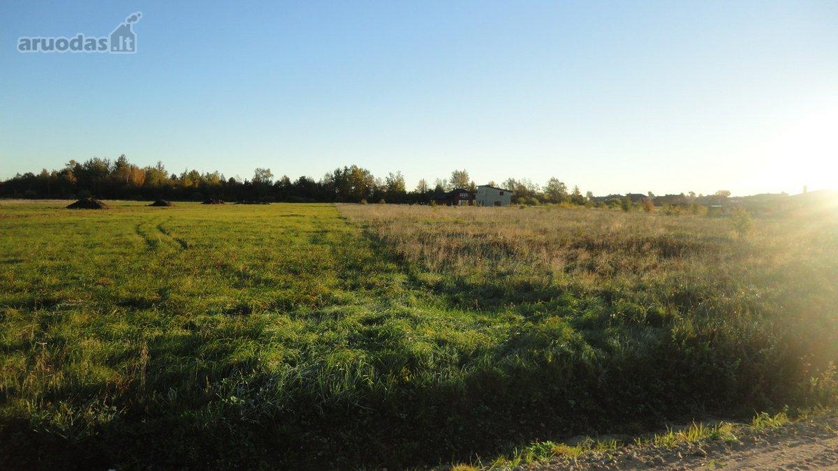 Šiauliai, Lieporiai, M. Mažvydo g., žemės ūkio paskirties sklypas