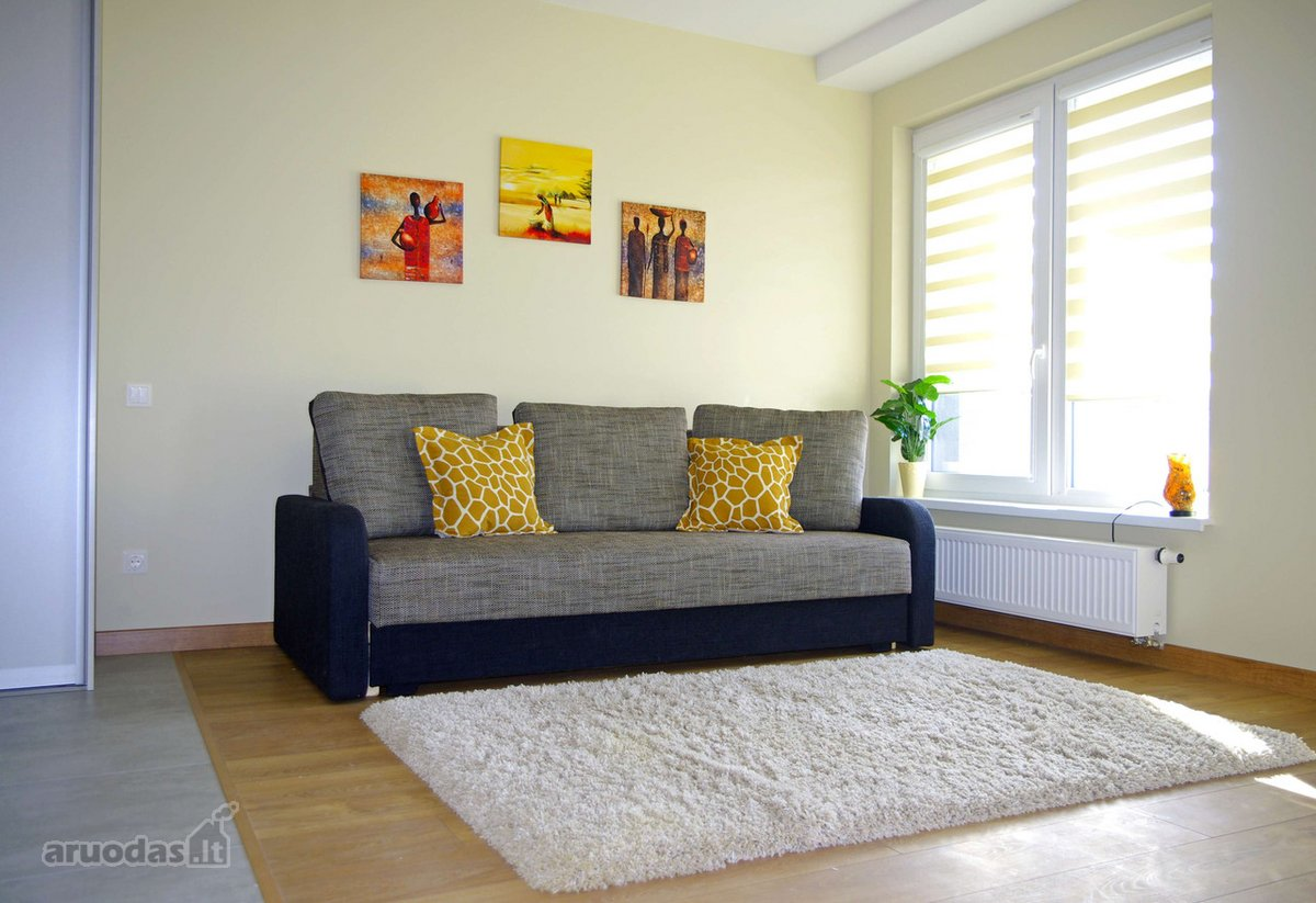 Vilnius, Naujamiestis, Švitrigailos g., 1 kambario buto nuoma