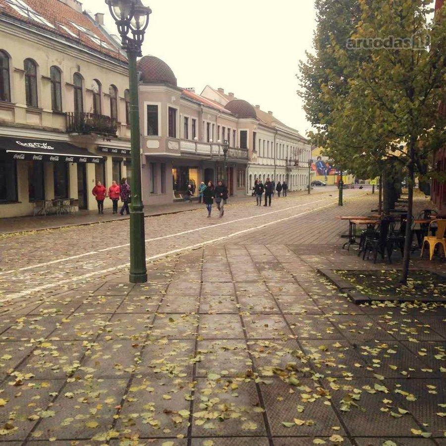 Kaunas, Senamiestis, Vilniaus g., 3 kambarių butas