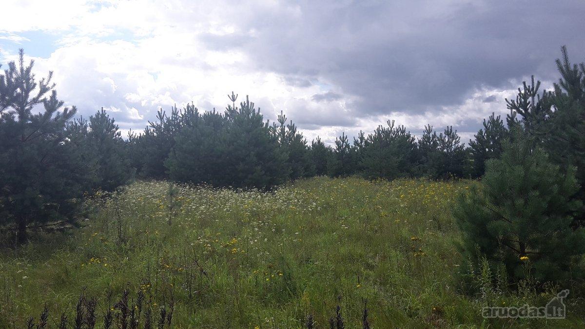 Vilniaus r. sav., Rudausių k., žemės ūkio paskirties sklypas