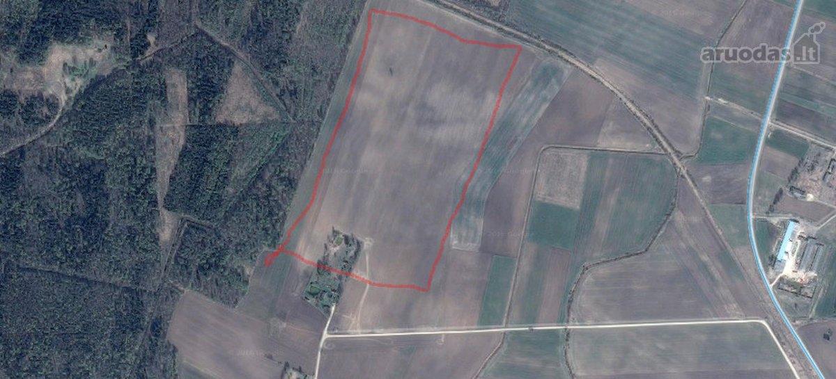 Pakruojo r. sav., Krivaičių k., žemės ūkio paskirties sklypas