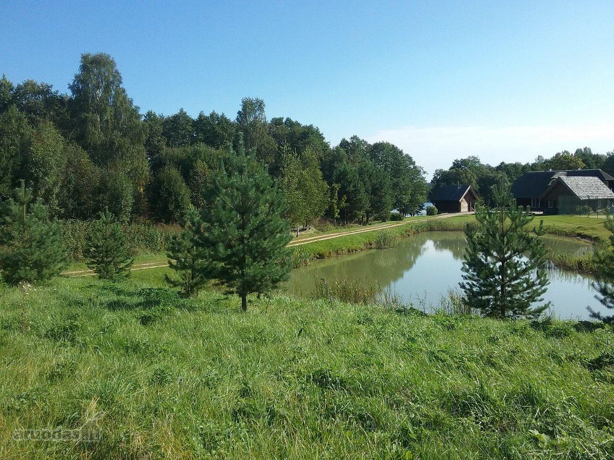 Vilniaus r. sav., Vilniškių k., namų valdos paskirties sklypas
