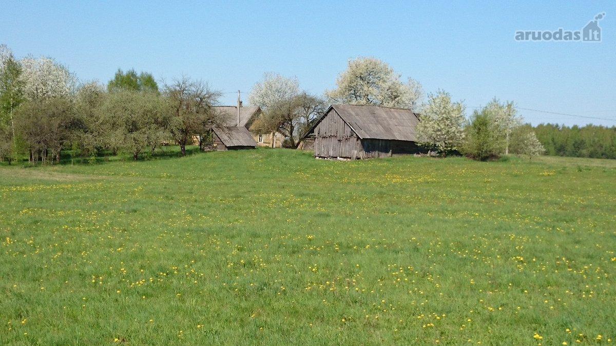 Trakų r. sav., Lausgenių k., Trakų g., medinė sodyba