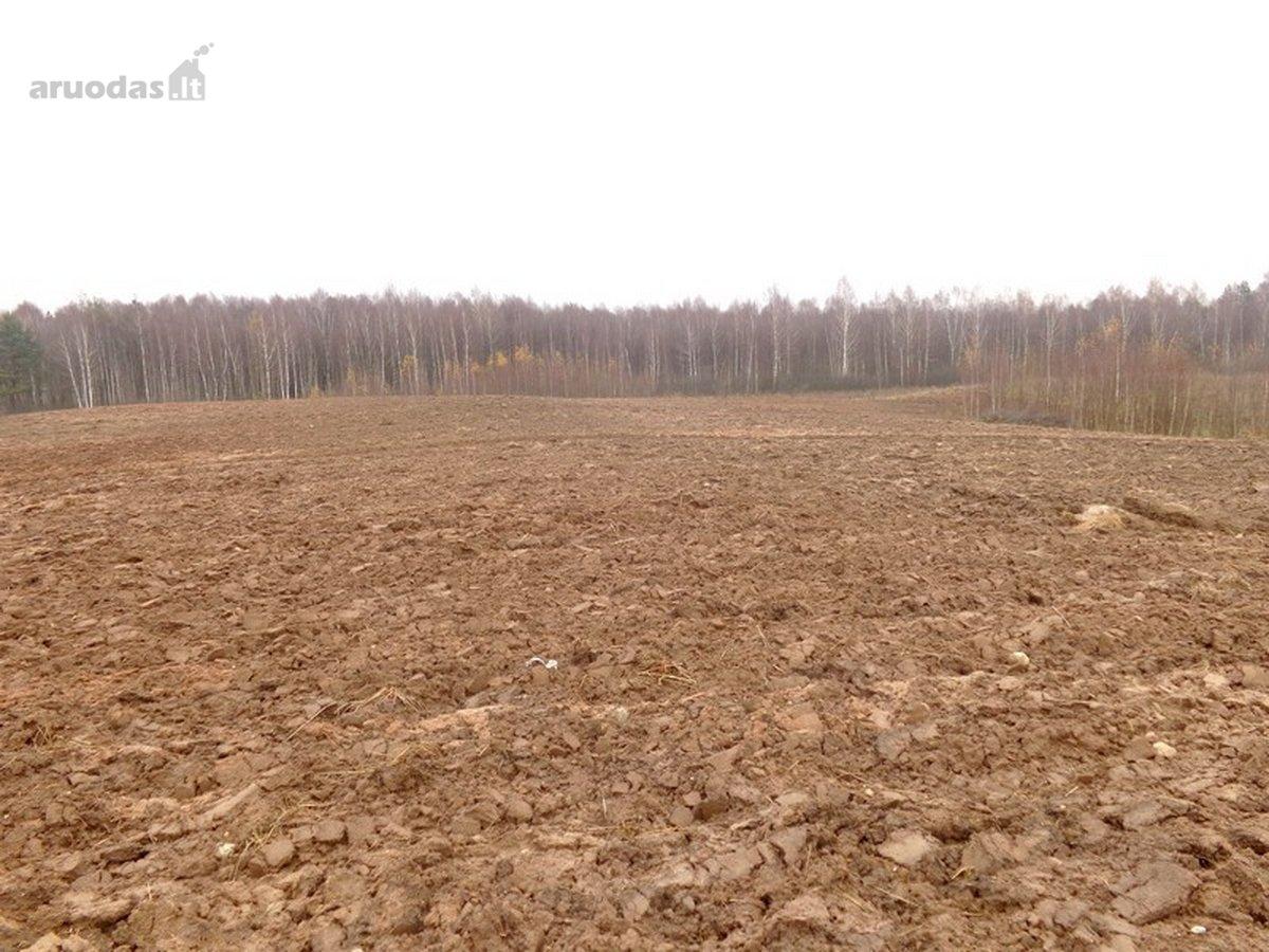 Vilniaus r. sav., Žemagulių k., žemės ūkio paskirties sklypas