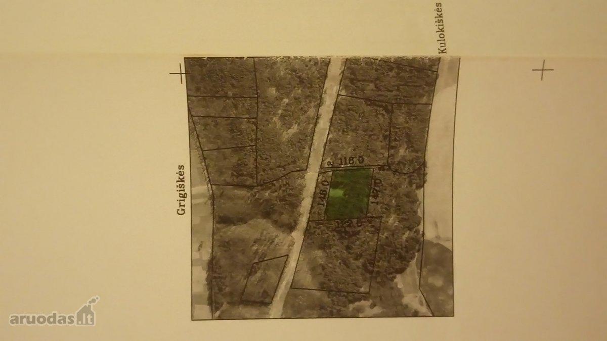 Vilniaus r. sav., Grigiškių vs., miškų ūkio paskirties sklypas