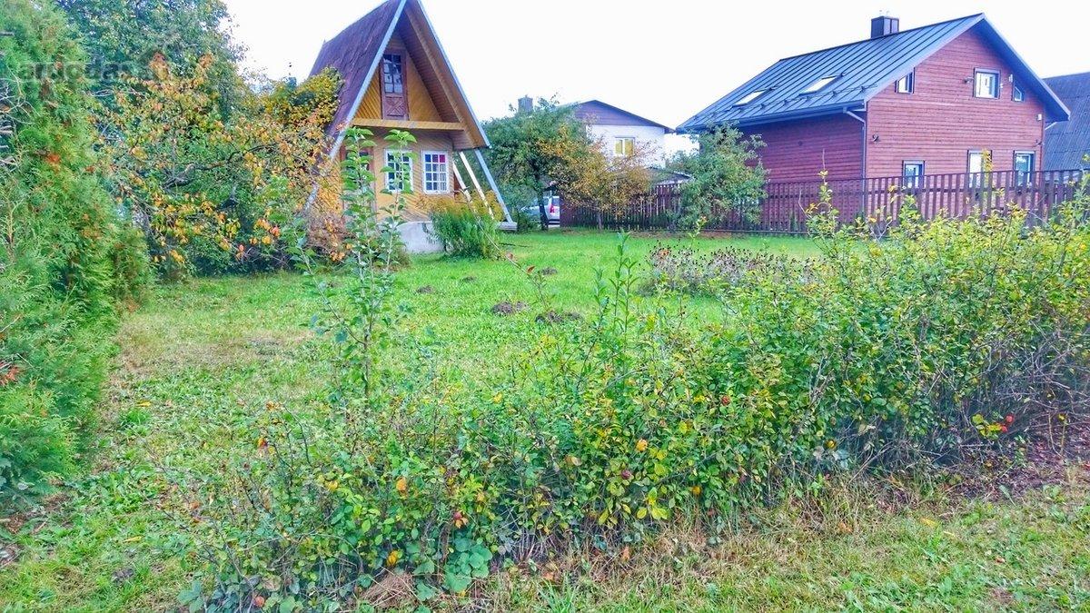 Utenos m., Vyturių, Pušyno g., karkasinis sodo namas