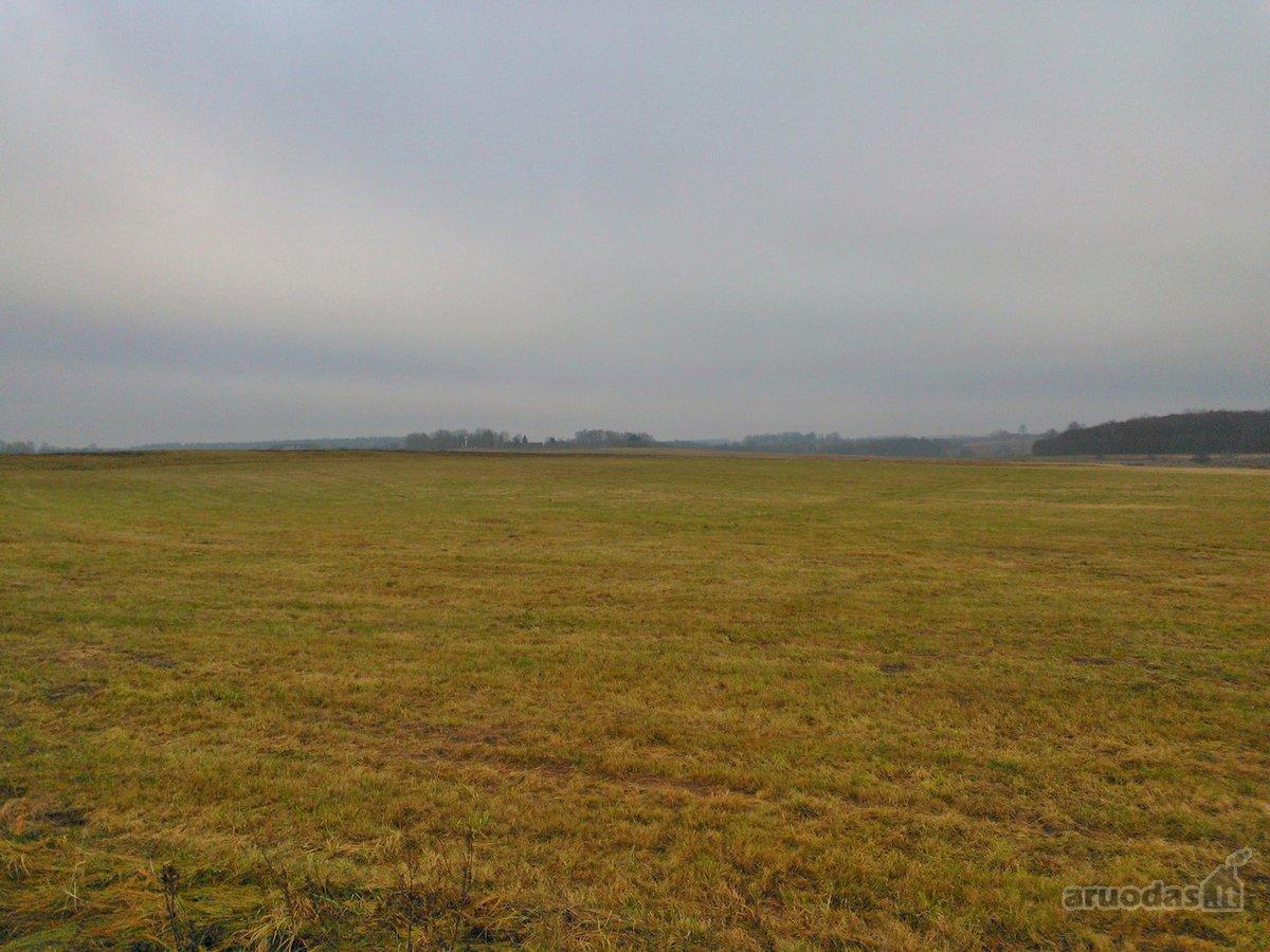 Šalčininkų r. sav., Turgelių k., žemės ūkio paskirties sklypas
