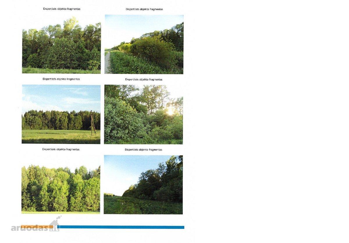 Širvintų r. sav., Gelvonų k., miškų ūkio paskirties sklypas