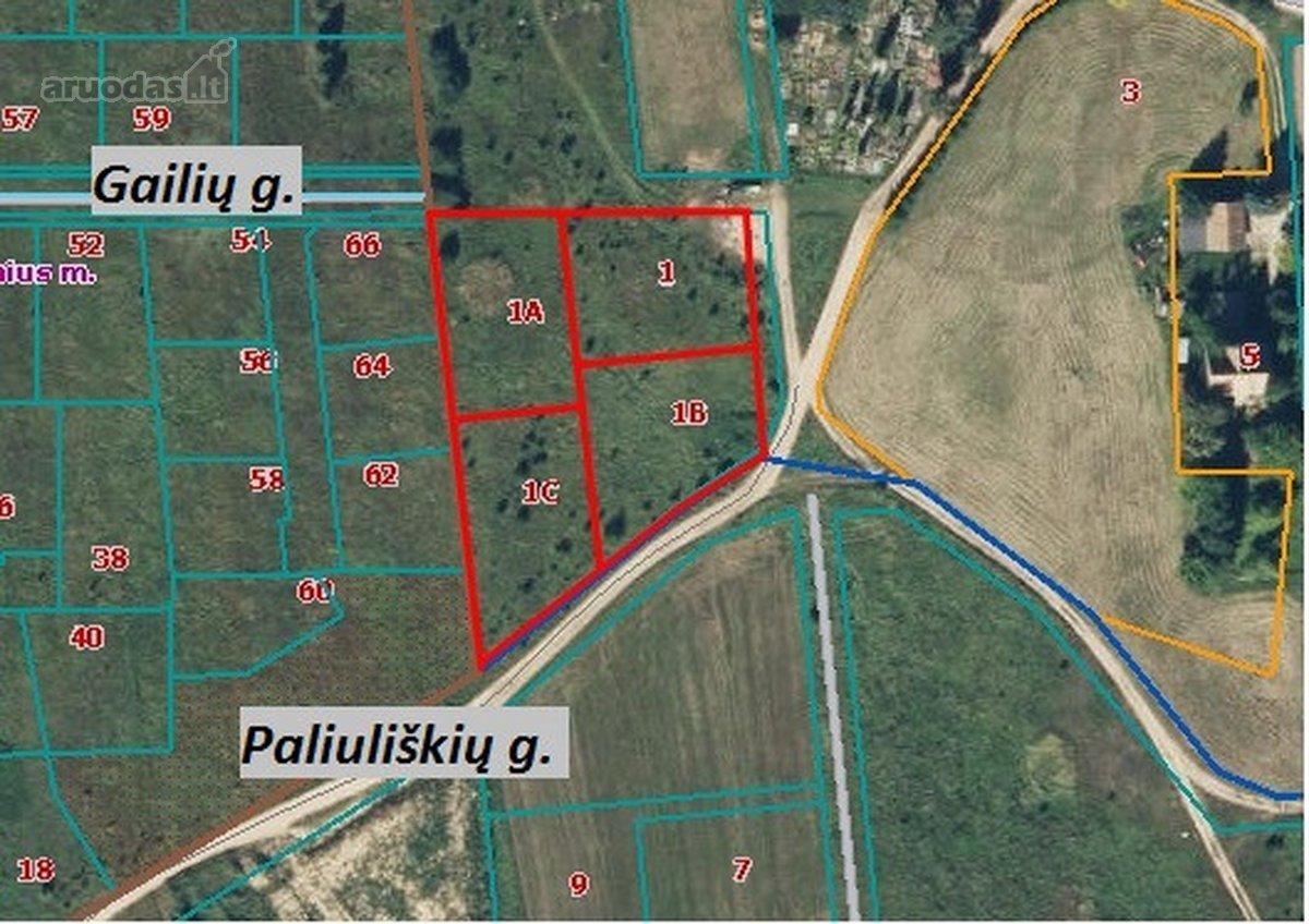 Vilniaus r. sav., Paliuliškių k., Paliuliškių g., namų valdos paskirties sklypas