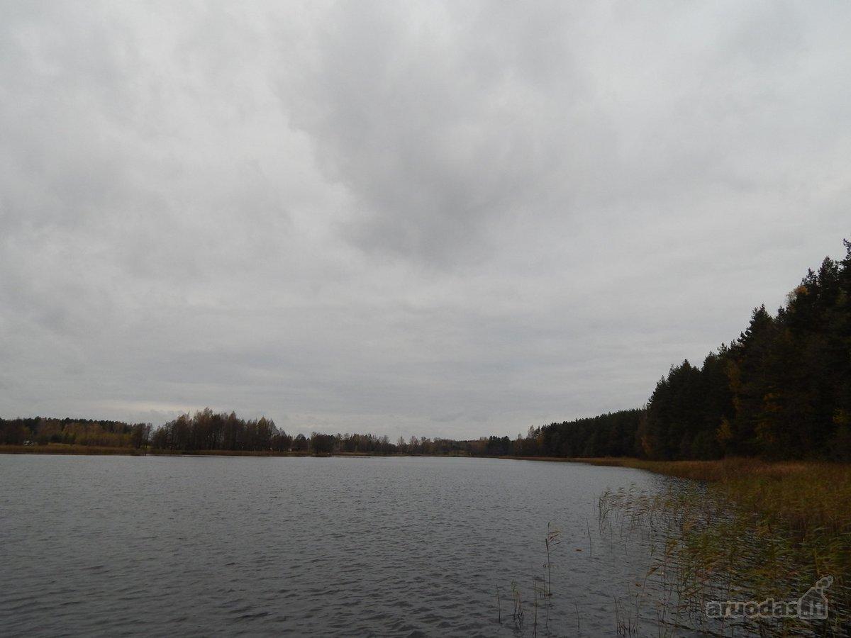 Molėtų r. sav., Skardžių k., žemės ūkio, miškų ūkio paskirties sklypas