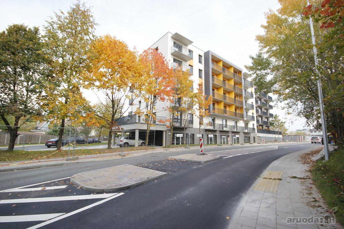 Vilnius, Šnipiškės, Linkmenų g., biuro, prekybinės, paslaugų paskirties patalpos nuomai