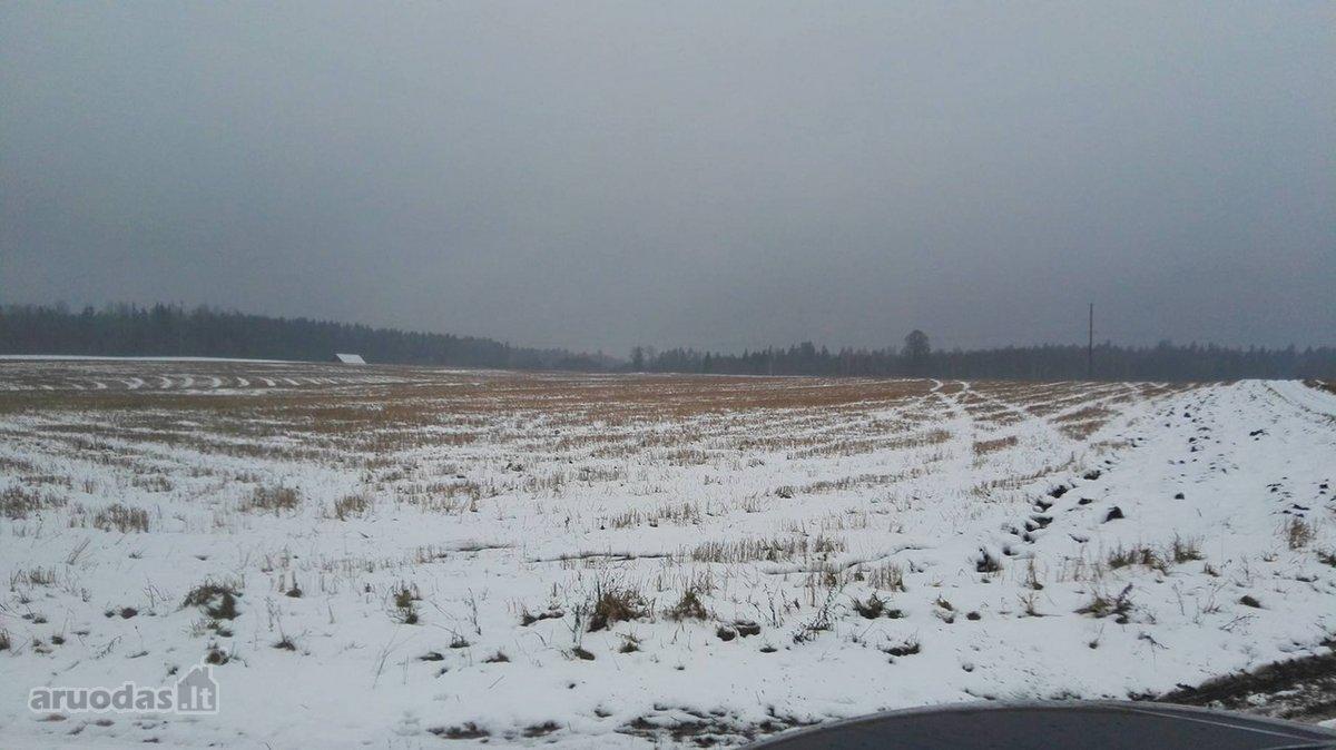 Rokiškio r. sav., Sodelių k., žemės ūkio paskirties sklypas