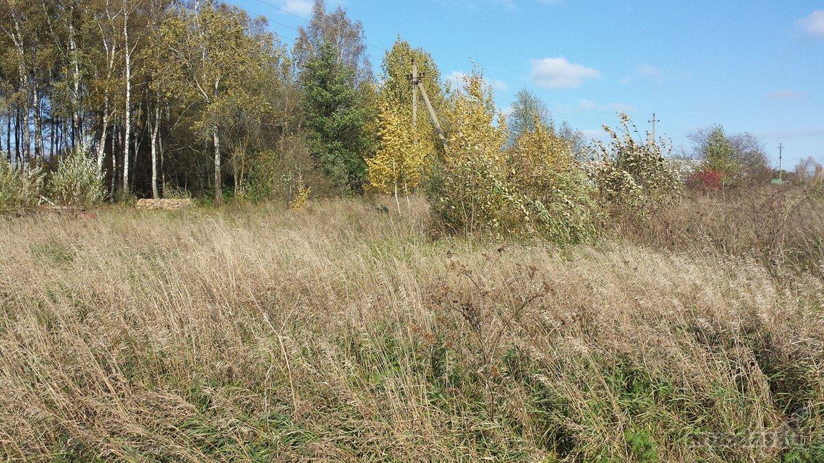 Vilniaus r. sav., Rudaminos k., žemės ūkio paskirties sklypas