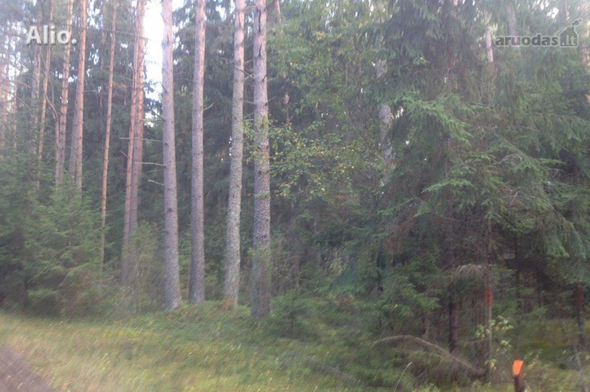 Varėnos r. sav., Varėnos m., miškų ūkio paskirties sklypas