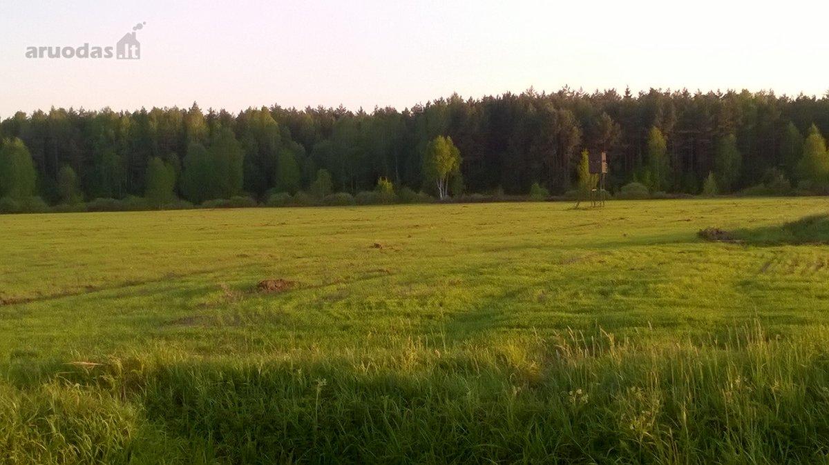 Vilniaus r. sav., Terešiškių k., žemės ūkio, miškų ūkio, Kita paskirties sklypas